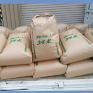 令和元年収穫❣️仁井田米❣️お買い得 コシヒカリより美味しいお試...