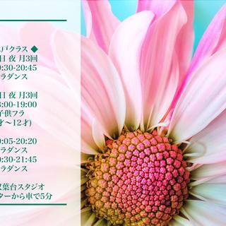 水戸フラダンス教室新規オープン- リコフラスタジオ