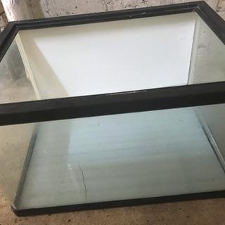水槽 60cm