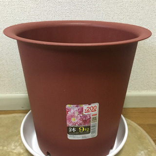 Flower pot & tray