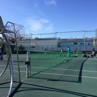 🎾今テニスが熱い🎾硬式テニスメンバー募集中!【宮城野パワーテニス...