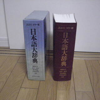 日本語大辞典 講談社カラー版