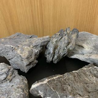 アクアリウム 龍王石 13pcs 中古6.6kg - 春日井市
