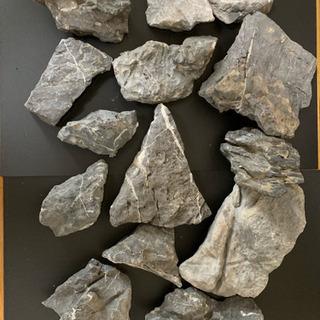 アクアリウム 龍王石 13pcs 中古6.6kgの画像