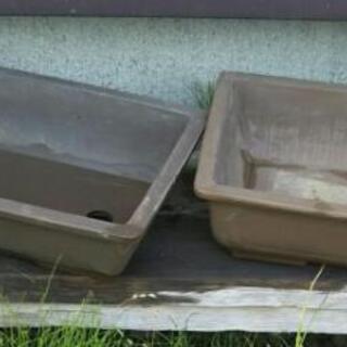 植木鉢 低