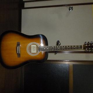 ハニービーW-15/TSアコースティックギター