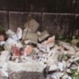不要になった、プラスチック植木鉢、その他ガラクタ無料で差し上げます − 福岡県