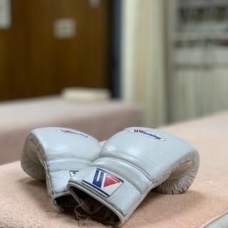 キックボクシングサークル