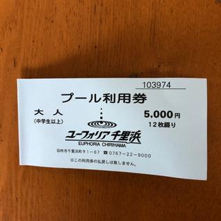 ユーフォリア千里浜 プール利用券 12枚綴り