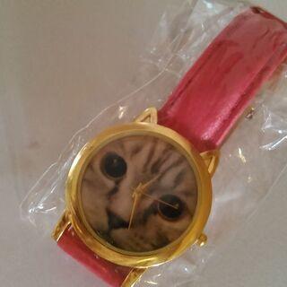 【未使用】猫ちゃんの顔がでっかくプリントされた腕時計
