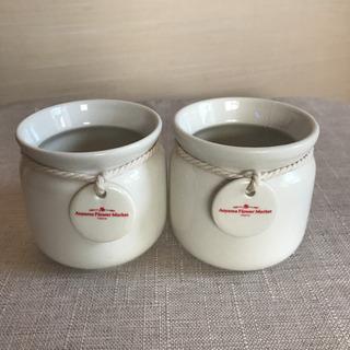 青山フラワーマーケットの鉢
