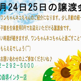 2019年8月24日25日(イベント情報)