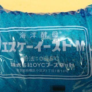 海洋酵母500g