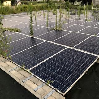 【急募】発電所の太陽光パネル間の除草作業