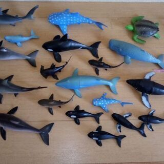 子ども 海の生き物 おもちゃ
