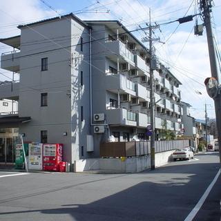 来春空き予定♪京都市北区の素敵なお部屋♪仲介手数料なし♪