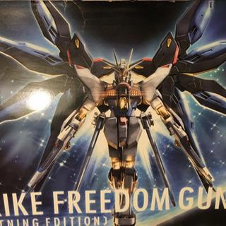 1/60 STRIKE FREEDOM GUNDAM[LIGHT...