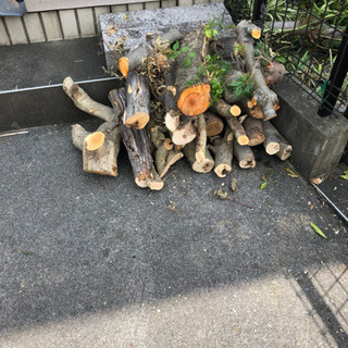 薪用雑木差し上げます