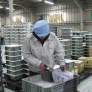 【大人気】軽量品の倉庫内作業/即日勤務可