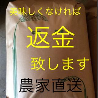 9月中旬収穫分 予約開始 渡部家の新米こしひかり 玄米