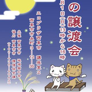 保護猫の譲渡会【西東京市地域猫の会】