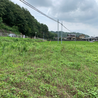 空き地、田畑、お庭の草刈りいたします。