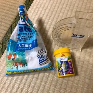 海水魚 飼育