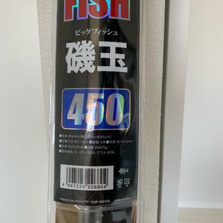 釣り道具  タモ  磯玉450
