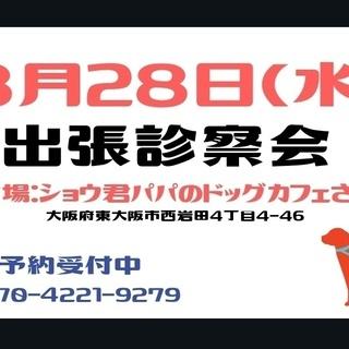 8/28(水)東大阪市ショウ君パパのドッグカフェさんにて出張診察会