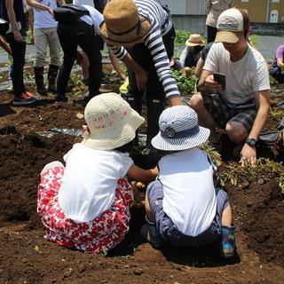 【シェア畑 リエット三鷹ガーデン】8/31にお子様向けの農業体験...