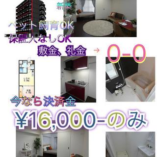 🎊新築🎊決済金¥16,000-のみ