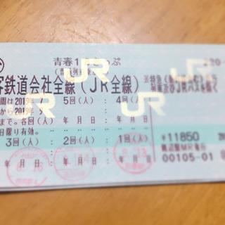青春18切符2回分(9/10まで)