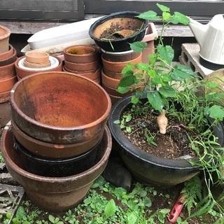 各種プランター、壺、ジョウロ