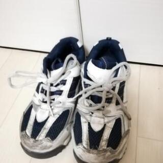安全靴  スニーカータイプ 23cm