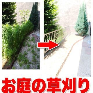 伐採、剪定、草刈りお任せ下さい!!!ご自宅の草刈りやお掃除…