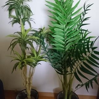 人工観葉植物2体あげます