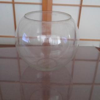 強化ガラス球体水槽(インテリア用)。