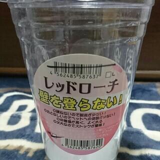 【ペット餌用ゴキブリ】レッドローチSS~Sサイズ[約20匹]