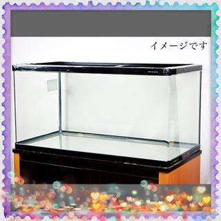 水槽セット!        90センチ!!     曲げガラス!!