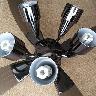 シーリングファン(LED電球付き)