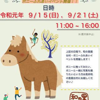 《和の里屋台村》ポニーふれあいイベント開催します!!