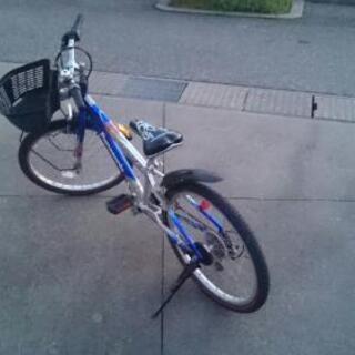 自転車いりますか?