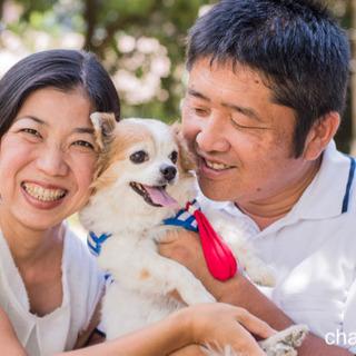 保護犬のためのチャリティ撮影会🐕🐶🐾