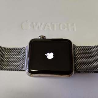 Apple Watch ステンレススチール Milanese Loop