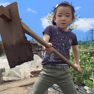 【新小岩体験ファーム】10/6まで秋冬会員募集中!無料・予約不要...