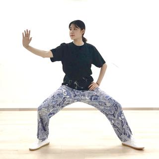 はじめての太極拳「呼吸法と簡単な2型」(60分)¥1,000
