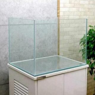 コトブキフレームレス水槽 大きいです。60×45×45