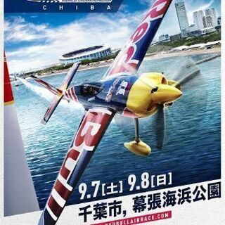 Red Bull Air Raceチケット(9月7日)単日一般