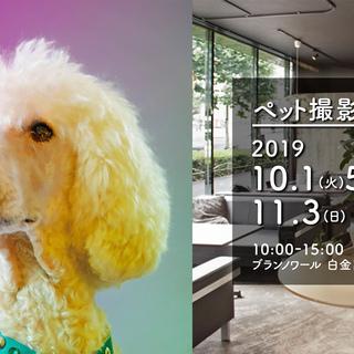 ブランノワール@白金高輪xpetomoni 10月1日(火)・5...