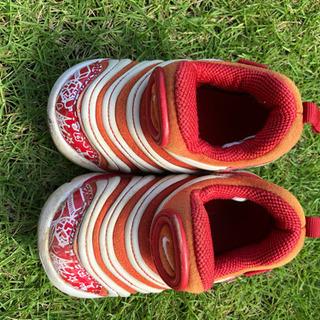 子供 靴 ナイキ ダイナモ 12センチ